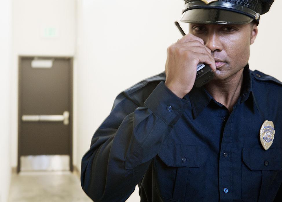 Durandal Surveillance agents de sécurité et gardiennage